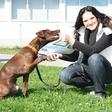 Alenka Gotar: Nabija kilometre