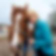 Saša Einseidler: Na pomoč konjem v stiski