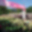 4. junija bo v parku Tivoli potekal 6. dm tek za ženske