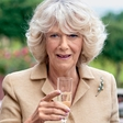 Camillagate II.: Camilla na skrivaj na zdravljenju?