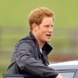 Princ Harry branil homoseksualnega sovojaka
