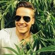 Tim Kores odkril nasad marihuane
