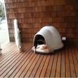 Uganete, koliko basetov spi v tej hišici za pse?