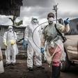 Virus ebola - spoznajte nevarnost, ki se je boji cel svet!