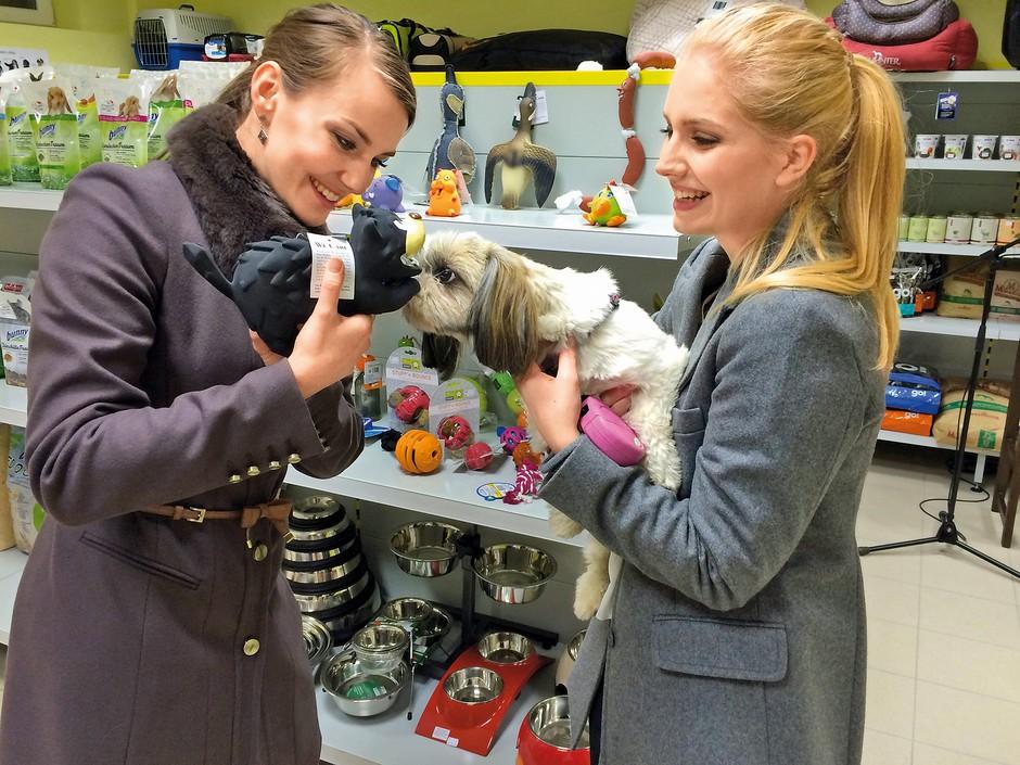 Živa Viktoria Turk in njeni nasveti za domače ljubljenčke (foto: Lea)