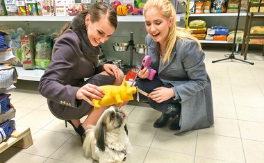 Živa Viktoria Turk in njeni nasveti za domače ljubljenčke