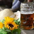 Uvertura v 51. festival Pivo in cvetje 2015 bo dan odprtih vrat Pivovarne Laško in Dan Laščanov