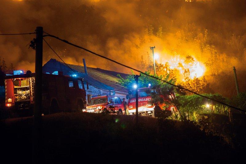 Dino se za to, da njegova počitniška hiša na Pelješcu ni zgorela  v celoti, lahko zahvali le požrtvovalnim hrvaškim gasilcem.