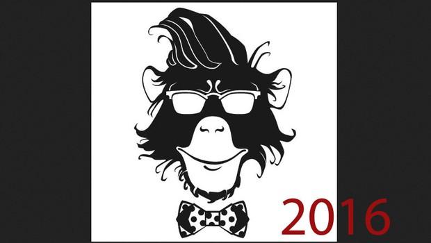2016 bo leto Opice! Preverite, kaj se vam obeta po kitajskem horoskopu! (foto: shutterstock)