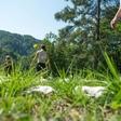 Domač kruh, zdravilna zelišča in dišeči vrtovi v Šmartnem pri Litiji