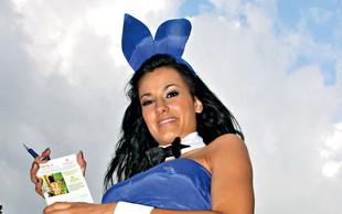 Aneta Andollini: Playboyeva  zajčica  v šovu  Survivor