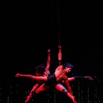 Cirque du Soleil evforija povzročila dodatno Varekai predstavo! (foto: Cirque du Soleil)