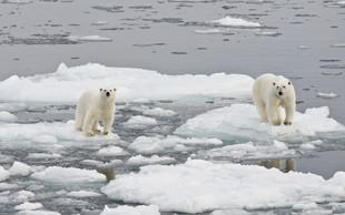 Na Arktiki beležijo rekordno visoke temperature, led pa se neusmiljeno topi!