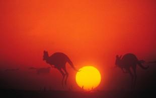 V Avstraliji zaradi priseljevanja že 25 milijonov ljudi!