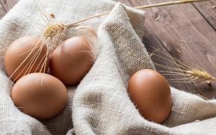 Hofer kot prvi v Sloveniji iz svoje ponudbe umika jajca iz baterijske reje!