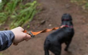 Policija išče lastnika psa, ki je na Golovcu pogrizel otroka
