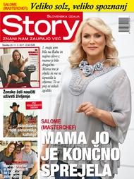 Story 20/2017