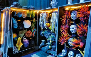 Cirque du Soleil: Skrivnostno zaodrje predstave Varekai