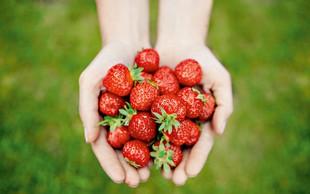 Nasveti za boljše uspevanje vrtnih jagod
