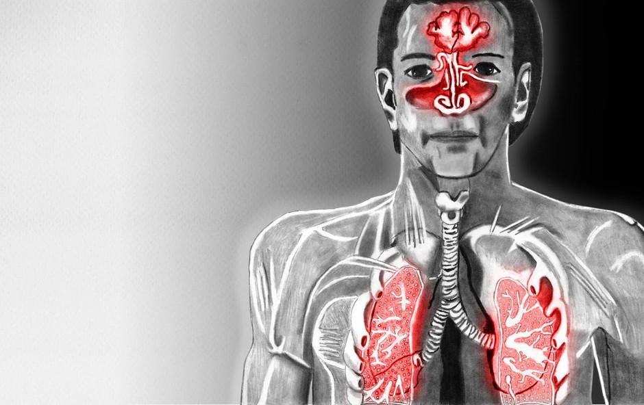 Osebnostne značilnosti naj bi vplivale na imunski sistem (foto: Profimedia)