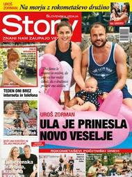 Story 32/2017