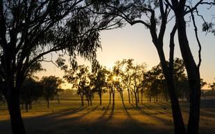 Avstralija letos beleži rekordno toplo zimo!