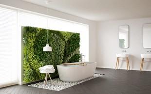 5 rastlin, ki se počutijo dobro tudi v kopalnici