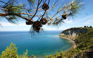 Odplujte zdravim in sončnim doživetjem naproti - v Terme na morju!