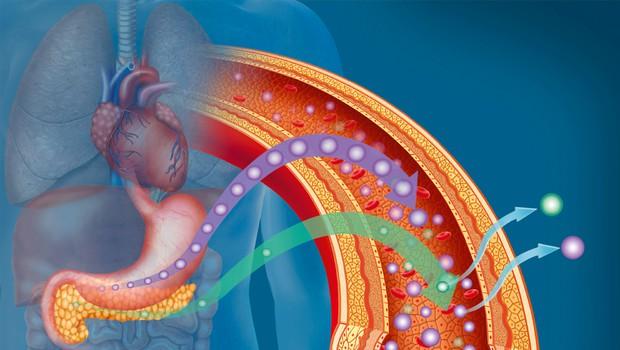 Za sladkorno bolezen tipa 2 ni 'kriv' bolnik sam (foto: Shutterstock)