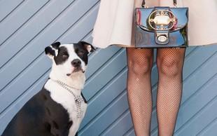 Gorenjski policisti opozarjajo: Skrbniki, pazite na svoje pse