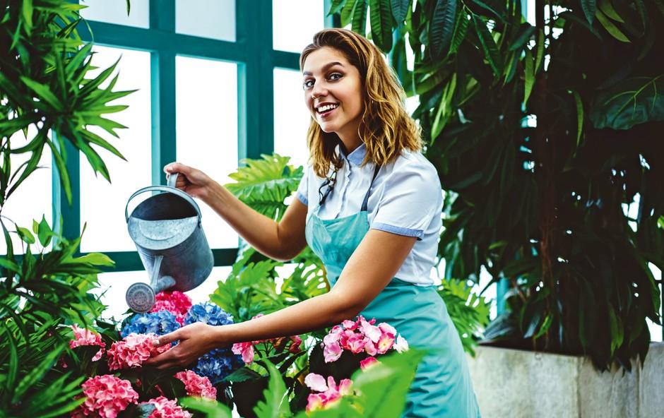 5 zvijač pri negi rož, ki prinesejo uspeh (foto: Shutterstock)