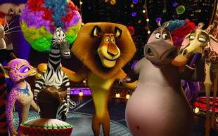 Po risanki še glasbeno - gledališki spektakel Madagascar!