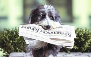 S starim papirjem pomagajmo živalim