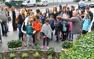 Ljubljanski šolarji posadili okoli 1.900 medovitih rastlin
