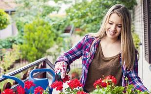 Zasadite svoja balkonska korita