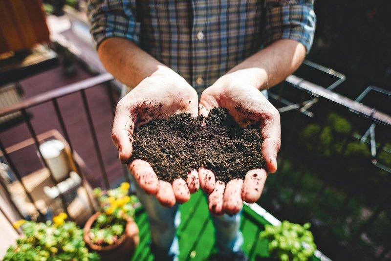 Zasadite svoja korita