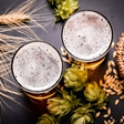 Pivo - pijača bogov, predsednikov in dobre družbe!