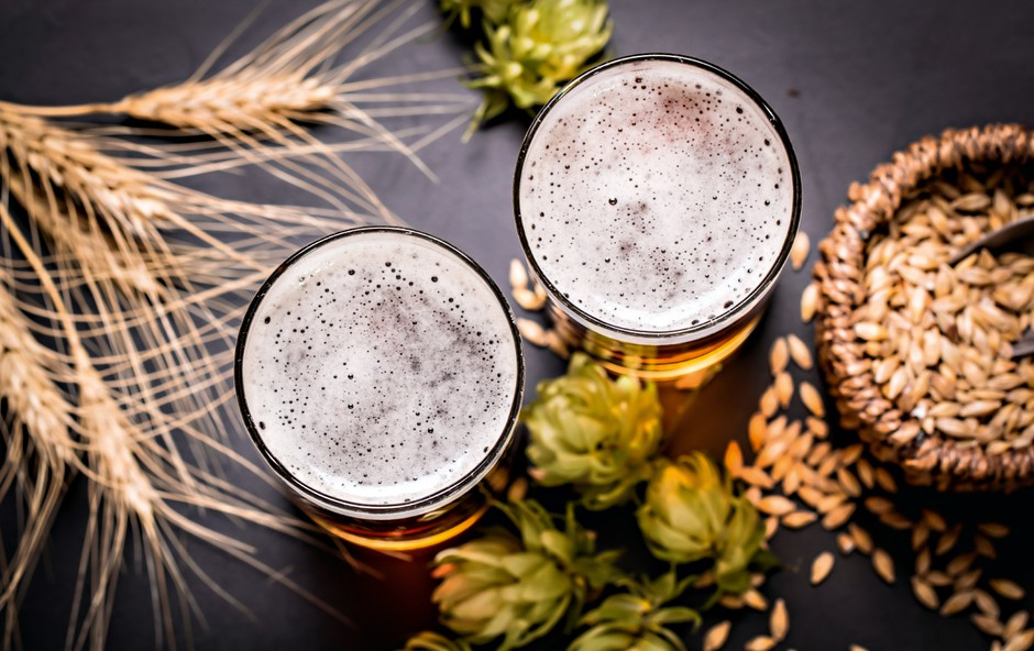 Pivo - pijača bogov, predsednikov in dobre družbe! (foto: arhiv Združenja slovenskih pivovarn)