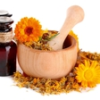 Poletna zeliščna apotekarna: Rastline v tem času pridobivajo moč