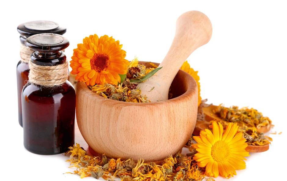 Poletna zeliščna apotekarna: Rastline v tem času pridobivajo moč (foto: Shutterstock)