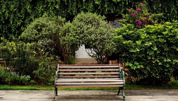 Nezahtevni vrtovi: Dobro načrtovanje prihrani veliko dela (foto: Shutterstock)