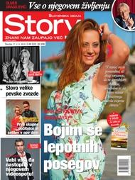 Story 17/2018