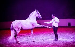 V Lipico prihaja svetovno znani šepetalec konjem
