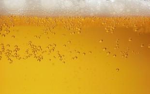 Veliko zanimanje za pivsko fontano v Žalcu, ki naj bi dobila kopije po svetu
