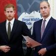 Princ Harry in William odslej v javnosti le še redko skupaj