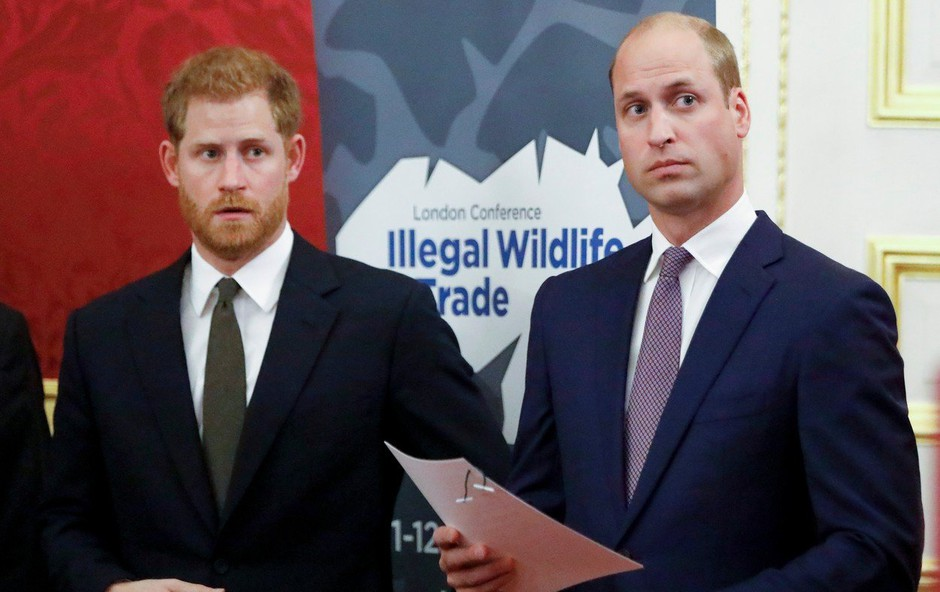 Princ Harry in William odslej v javnosti le še redko skupaj (foto: Profimedia)