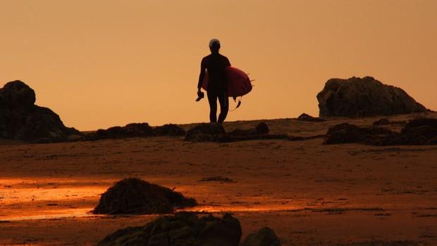 Avstralija: Moški se je pred morskim psom obranil s surfom! (foto: profimedia)