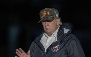 Fince neznansko zabavajo Trumpovi komentarji o gozdovih