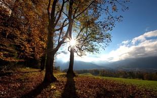 Letošnja jesen za dve stopinji toplejša od povprečja, količina padavin pa podpovprečna