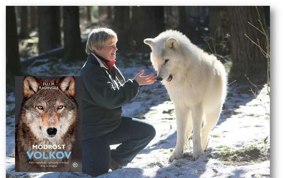 Avtorica knjige Modrost volkov prihaja tudi v Slovenijo (foto: emka.si, Mladinska knjiga)